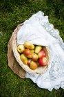 Корзину яблок и груш на траве — стоковое фото