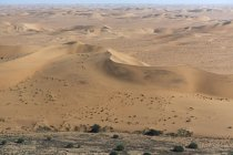 Aerial view of desert sand dunes landscape — Stock Photo