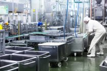 Работник мужского пола, работающий на фабрике органического тофу — стоковое фото