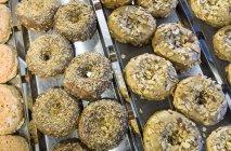 Bagels sur la grille en boulangerie, New York, é.-u. — Photo de stock