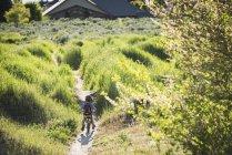 Heckansicht des kleinen Jungen Radfahren im Park, Sandy, Utah, Usa — Stockfoto