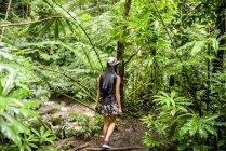 Вид сзади молодых женщин туристических прогулок в джунглях, Маноа падает, Оаху, Гавайи, США — стоковое фото