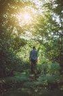 Заднього вигляду молода людина прогулянки у лісі — стокове фото