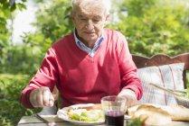Старший чоловік обідав на відкритому повітрі в саду — стокове фото