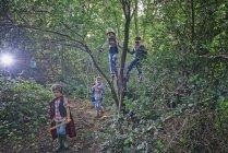 Quatro meninos vestidos e brincando em árvores da floresta — Fotografia de Stock