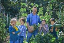 Мужчина и сыновья, держащие на руках овощи — стоковое фото