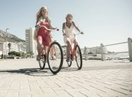 Young women cycling on seafront, Cape Town, South Africa — Stock Photo