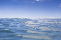 Surface level view of clear sea water, new zealand — Stock Photo