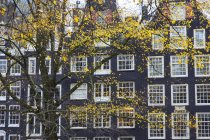 View of Building, Amsterdam, The Netherlands — Stock Photo