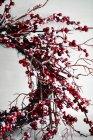 Cortado tiro de la corona de Navidad de ramitas y bayas rojas - foto de stock