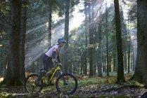 Mountain bike femminile in bicicletta nella foresta illuminata dal sole di Dean, Bristol, Regno Unito — Foto stock