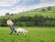Дівчина з козячого на мотузці ходьба в області — стокове фото