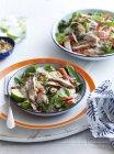 Натюрморт з Курячий салат тайському стилі з локшиною, Чилі та вапна на стіл — стокове фото