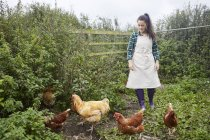 Donna che indossa il grembiule su allevamento di polli — Foto stock