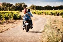 Задній вид на середині дорослих пара їзда мотоцикл звивистій дорозі сільських — стокове фото