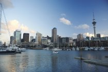Distant view of Auckland, New Zealand — Stock Photo