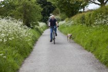 Senior man riding bike on country lane with dog — Stock Photo