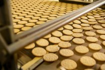 Biscuits on production line — Stock Photo