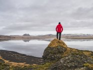 Man standing on rock, looking at view, Dyrholaos, Iceland — Stock Photo