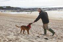 Homem e cachorro na praia, Baía de Constantino, Cornwall, Reino Unido — Fotografia de Stock
