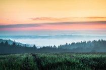 Закат над полем в Nussbaum — стоковое фото