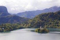 Vista da Igreja na ilha de Bled — Fotografia de Stock