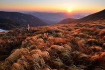 Chornogora Ridge Landscape, Carpathian Mountains, Ivano-Frankovsk Region, Ukraine — Stock Photo