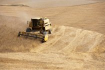 Harvester at work in crop fields — Stock Photo