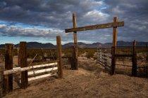 Ручка для крупного рогатого скота — стоковое фото