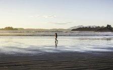 Mann, ein Spaziergang am langen Strand bei Sonnenaufgang, Pacific Rim National Park, Vancouver Island, British Columbia, Kanada — Stockfoto