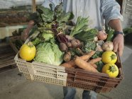 Обрезанный снимок человека с коробкой, полной свежих овощей — стоковое фото
