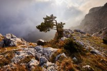 View of storm clouds from Ai-Petri Mountain, Crimea, Ukraine — Stock Photo
