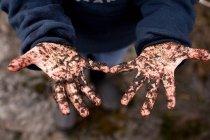 Ragazzo con le mani coperte di terra — Foto stock