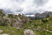 Vallée rocheuse avec une herbe verte et d'arbres sous le ciel nuageux — Photo de stock