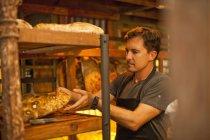 Mature man placing fresh bread on shelves — Stock Photo
