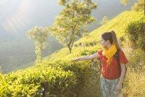 Jovem em plantações de chá perto de Munnar, Kerala, Índia — Fotografia de Stock