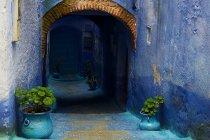 Arco de rua e plantas em vaso em Chefchaouen, Marrocos — Fotografia de Stock