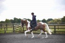 Junge Frau auf Pferd auf der Koppel — Stockfoto