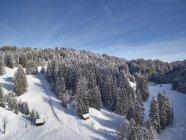 Vista aérea de cabines e montanhas cobertas de neve, com árvores na Baviera, Alemanha — Fotografia de Stock