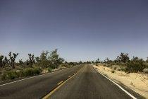 Национальное шоссе тропы, Амбой, Калифорния, США — стоковое фото