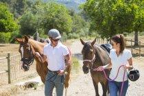 Самец и самка женихов ведущих лошадей из паддока на сельских конюшни — стоковое фото