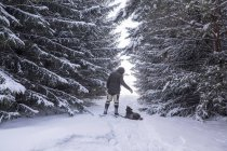 Rear view of man and obedient dog in snow covered forest, Ural, Russia — Stock Photo