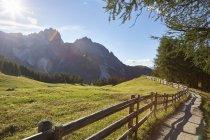 Montagnes Rocheuses et l'escrime behid champ vert — Photo de stock