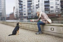 Mid adult woman and training her dog on city riverside — Stock Photo