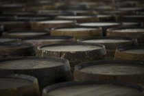 Rows of wooden whisky casks in whisky distillery — Stock Photo