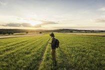 Homem adulto médio, em pé no campo, segurando câmera SLR, olhando para a vista, Neulingen, Baden-W? rttemberg, Alemanha — Fotografia de Stock