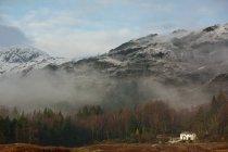 Niebla del balanceo sobre paisaje rural - foto de stock