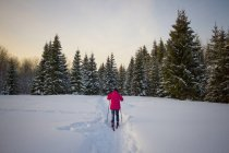 Teenage girl, cross country skiing, rear view, Chusovo, Russia — Stock Photo