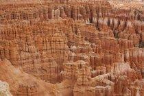 Formazioni rocciose nel Bryce Canyon National Park, Utah, USA — Foto stock