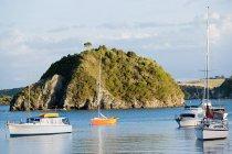 Залив Островов, яхты в заливах вблизи Kerikeri, Новая Зеландия — стоковое фото